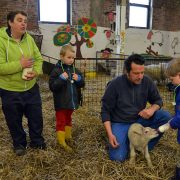 visite-pedagogique-mouton-ecole